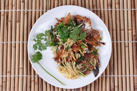 fishbone: Thai food, Fried ginger with Tilapia fish  (Call Pla Nil Pad Khing in Thai)