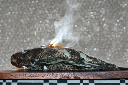 mined: Aroma smell of streamed tilapia fish on butcher served for cooking . Selective focus . Stock Photo