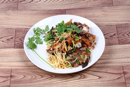 pla: Thai food,Fried ginger with Tilapia fish  (Call Pla Nil Pad Khing in Thai) topped coriander.