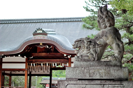 Shisa or Shishi ,Imperial guardian lions image in Japan,The male lions jaw image for  becky fortune came at Fujinomori shrine ,Kyoto,Japan.  Selective focus
