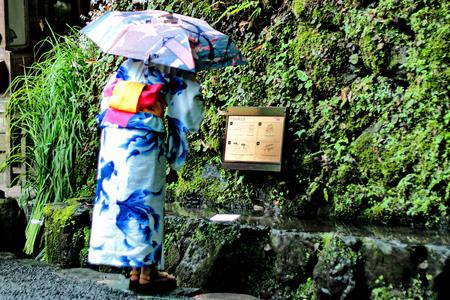 hoja en blanco: Kimono lady blank sheet of paper prediction,follow label instructions, turns out to be literally on the water.  Kibune-jinja shrine, Kyoto, Japan. Selective focus.