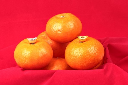 Golden orange with silver and gold of silver ingots on red background, to celebrate the blessing. According to the beliefs of the in China. To give life and trade flourished.