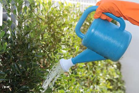 Handheld sprinklers watering plants spray water to plants in the home garden