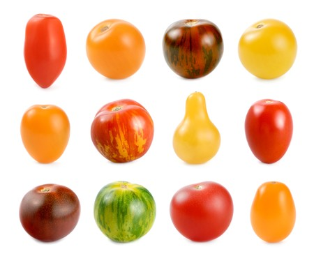 High resolution image of 12 different sorts of small tomatoes on white background photo