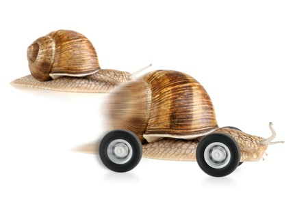 dashing: Snail on wheels dashing past another snail, concept shot suitable for various fields