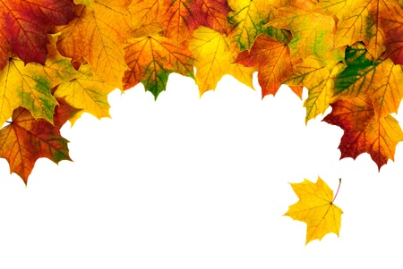Bow-shaped border made from colorful autumn leaves isolated on white copy-space