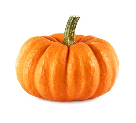 Studio shot of a nice ornamental pumpkin on pure white background