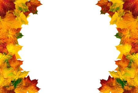 Colorful autumn leaves on white background build a round border photo