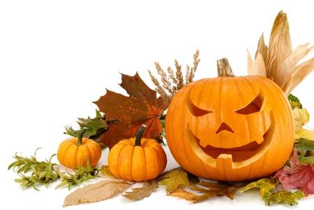 calabazas de halloween: Disparo de estudio de calabazas de Halloween y hojas de oto�o dispuestas sobre fondo blanco