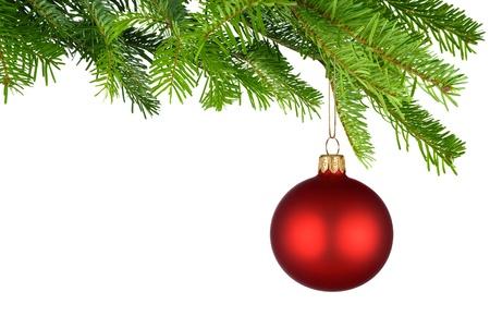navidad elegante: Foto de estudio brillante de un hecho aislado chucher�a roja Navidad que cuelgan de las ramas de abeto verde fresco