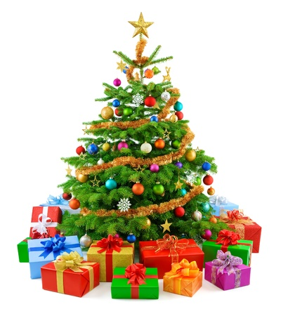 coniferous tree: Lush christmas tree with colorful gift boxes
