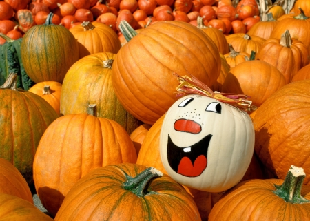 painted face: Pumpkin with a painted happy face standing out from the crowd