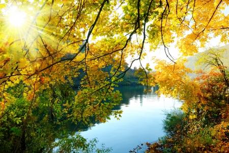 태양은 황금 나뭇잎을 통해 빛나는 강에서 다채로운 가을 풍경, 스톡 콘텐츠