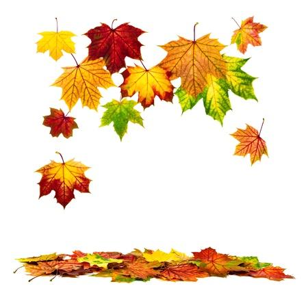 Multi-barevné podzimní listí padá na zem s bílou kopií vesmíru