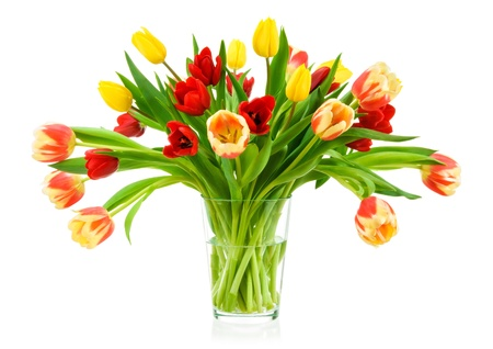 Neat bouquet of colorful tulips in a clear glass vase, isolated on white photo