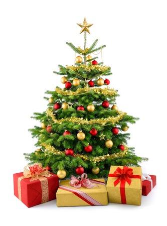 豪華な緑豊かなクリスマス ツリーの前のギフトの明るいスタジオ撮影ボックスします。 写真素材