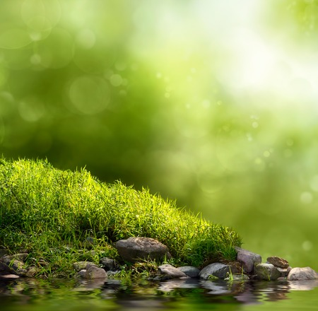 shallow focus: Square background with grass, stones and water in the foreground over out of focus trees and sunlight