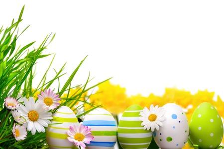 Border mit Ostereier, kleine Frühlingsblumen und Gras auf weißem Hintergrund angeordnet Lizenzfreie Bilder