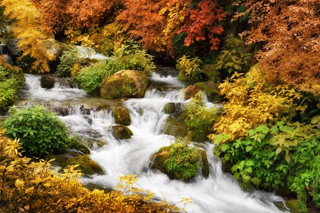 bordered: Colorful autumn scenery with a mountain creek framed by multi-colored greenery
