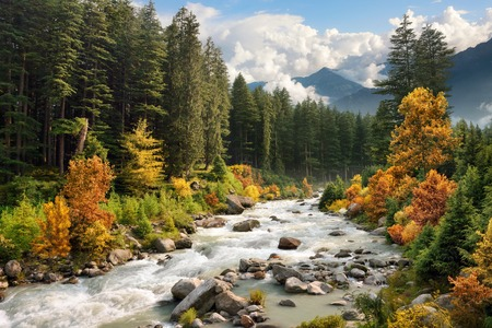 Beautiful colorful landscape with a stream and forest in autumn colors photo