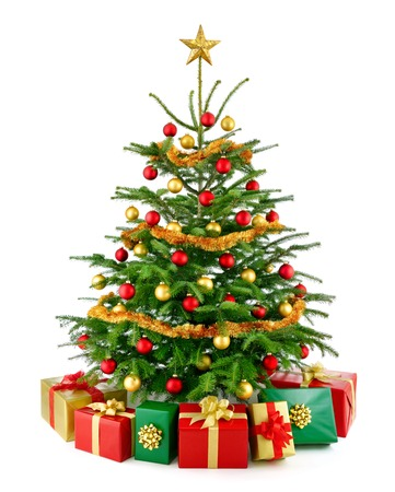 Bright studio shot of a gorgeous lush Christmas tree decorated in red and gold, with colorful gift boxes arranged in front of it, isolated on pure white  photo