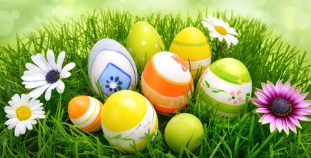 Colorful Easter eggs and spring flowers on fresh green grass, with bright blurred background, in wide format photo