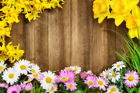 Colorful spring flowers and fresh long grass frame a rustic wooden background, making perfect copyspace for your text Stock Photo
