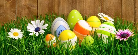 Colorful Easter eggs and spring flowers on fresh grass in front of a wooden wall or fence, wide format studio shot photo