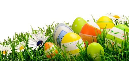 Colorful Easter eggs and spring flowers on fresh grass isolated on pure white, wide format studio shot photo