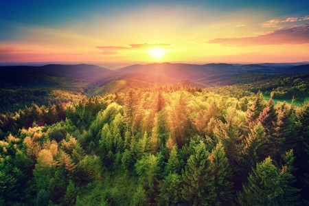 cenital: Vista aérea de una puesta de sol escénica sobre las colinas del bosque, con colores intensos tonos