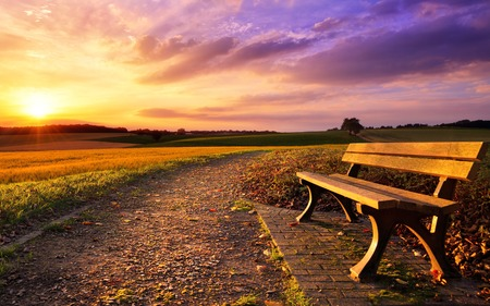 Colorful sunset scenery in rural landscape with a bench and a path in the foreground, gold fields and dramatic vivid sky in the background