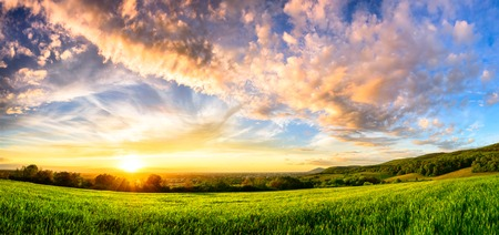 Panorama of a colorful sunset on a fresh green meadow, wide format rural landscape with vibrant colors