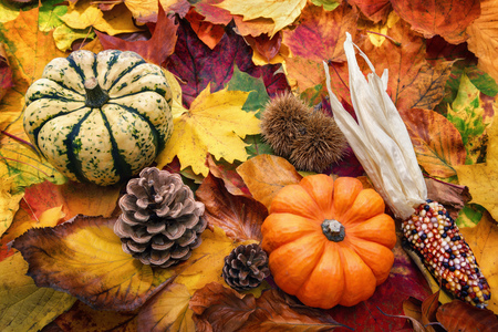 fall harvest: Autumn decoration arranged with natural elements such as colorful dry leaves, ornamental pumpkins and cones Stock Photo