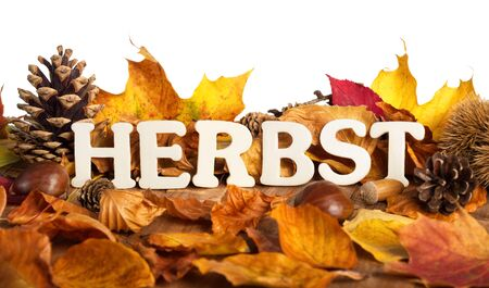 herbst: German word for autumn, Herbst, written on dry leaves with wooden letters, white background