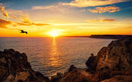 Rustige zonsondergang landschap aan de oceaan met het zonlicht dat weerkaatst op het water, een vliegende vogel en de rotsachtige kust Stockfoto