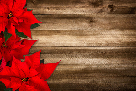Christmas background composed of wood planks and poinsettia, with warm colors and nice vignetting