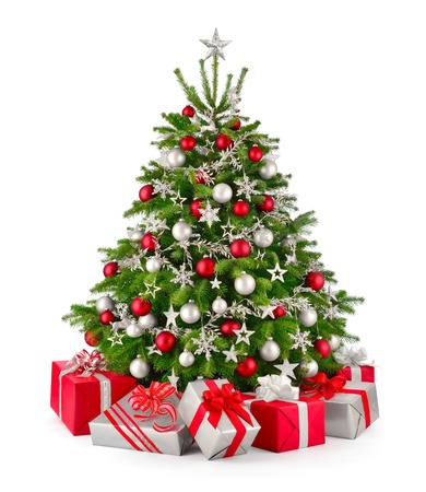Gorgeous natural Christmas tree with red and silver gray ornaments and matching gift boxes, studio isolated on white background