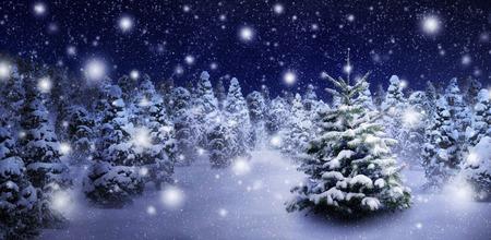 Outdoor nacht opname van een mooie dennenboom in dikke sneeuw, voor de perfecte sfeer van Kerstmis