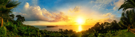 framed: Panorama of a gorgeous colorful sunset at the sea, framed by silhouettes of the coast vegetation