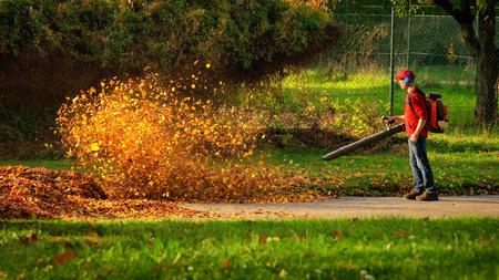 Mann, der eine schwere Laubgebläse betrieben: die Blätter werden aufgewirbelt und leuchten in der angenehmen Sonne