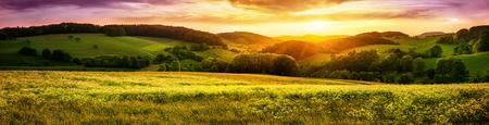Coucher de soleil panoramique sur un vaste paysage de prairie fleurie, avec des collines à l'horizon et ciel coloré