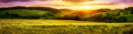 Panoramic sunset over a vast blossoming meadow landscape, with hills on the horizon and colorful sky