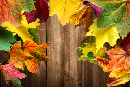 Colorful maple leaves in autumn frame a wood planks background Stock Photo