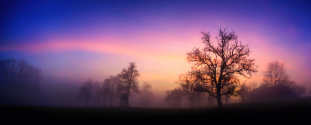 Panoramic rural landscape with dramatic sky at dawn, silhouettes of bare trees in fog against pink and purple clouds