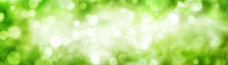Panoramic background of green foliage bokeh with beautiful shimmering highlights