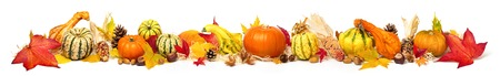 Colorful autumn decoration with leaves, pumpkins and more, isolated and extra wide format as banner or border
