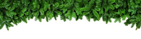 Large bordure de Noël arrangée avec des branches de sapin frais isolés sur blanc en forme d'arche, format de bannière