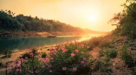 Sunset at a pristine riverbank in India, warm colours, with pink flowers in the foreground Imagens
