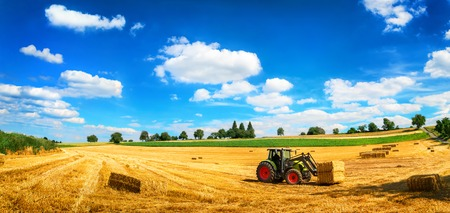 Rural landscape in vivid blue and yellow, with a tractor working, blue sky and a harvested gold field
