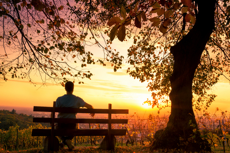 Silhouette of a man sitting on a park bench and enjoying a magnificent autumn sunset